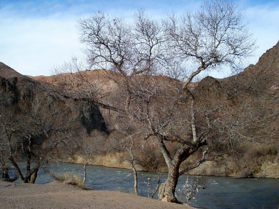Charyn canyon, Kazakhstan view 6