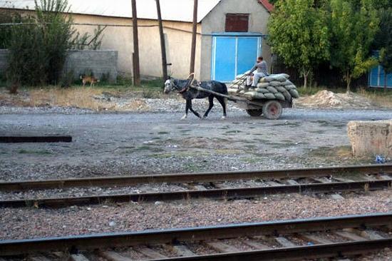 Almaty - Shymkent train travel views 12