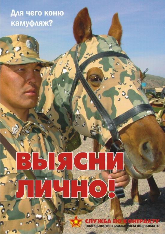Kazakhstan army horse camouflage