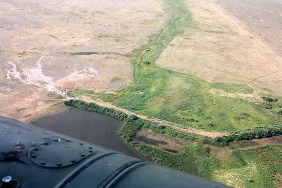 Akmola oblast, Kazakhstan view 10