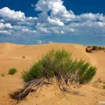 The landscapes of Kazakhstan desert
