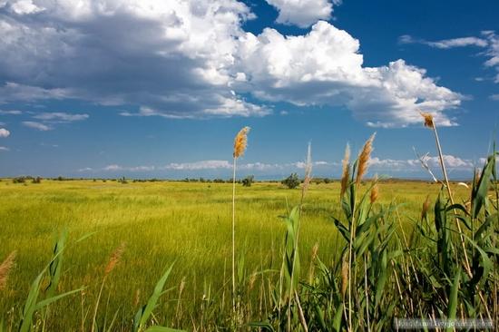 Kazakhstan steppe view 4