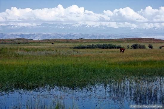 Kazakhstan steppe view 6