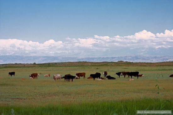 Kazakhstan steppe view 7