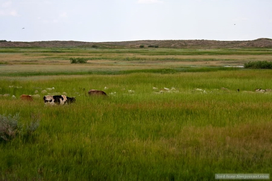 Kazakhstan steppe view 8