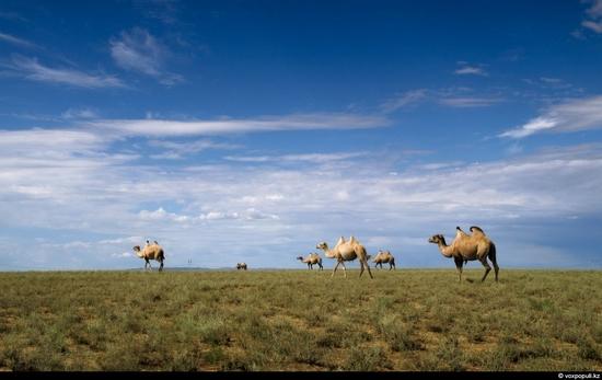 Breathtaking views of Kazakhstan nature 10