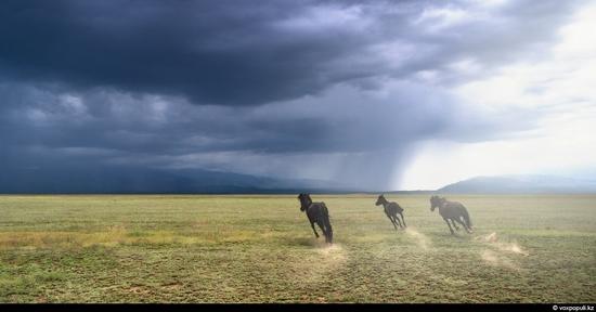 Breathtaking views of Kazakhstan nature 7
