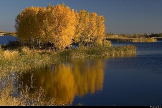 Almaty oblast, Kazakhstan beauty 10