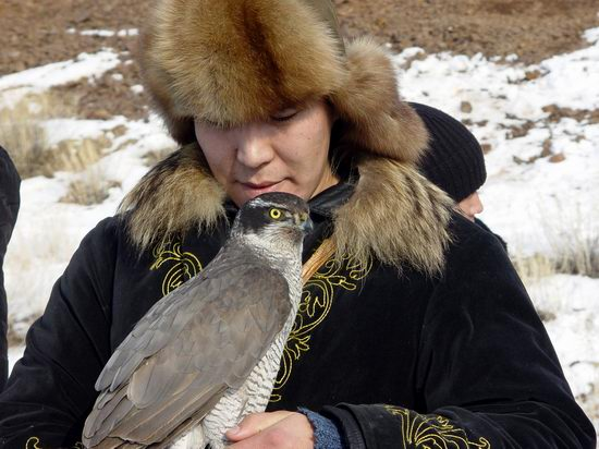 Kazakhstan - The hunt with tame hawks and falcons view 13
