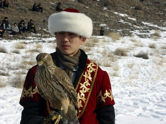 Kazakhstan - The hunt with tame hawks and falcons view 20