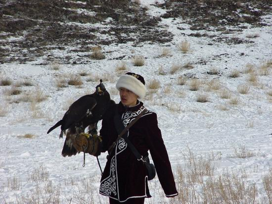 Kazakhstan - The hunt with tame hawks and falcons view 4