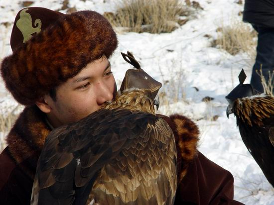 Kazakhstan - The hunt with tame hawks and falcons view 9