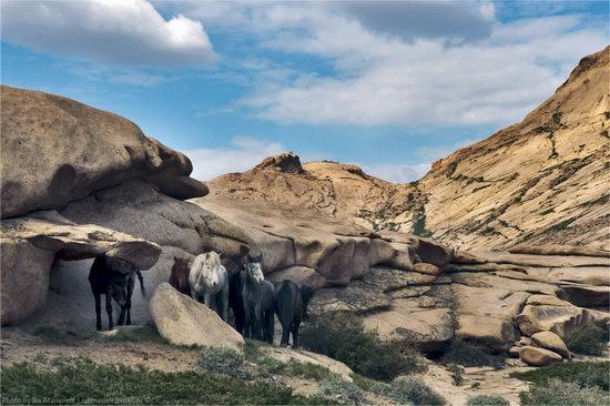 Picturesque sceneries of Bektau-Ata, Kazakhstan 6