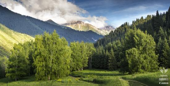 Summer pastures Taban-Karagai, Kazakhstan view 7