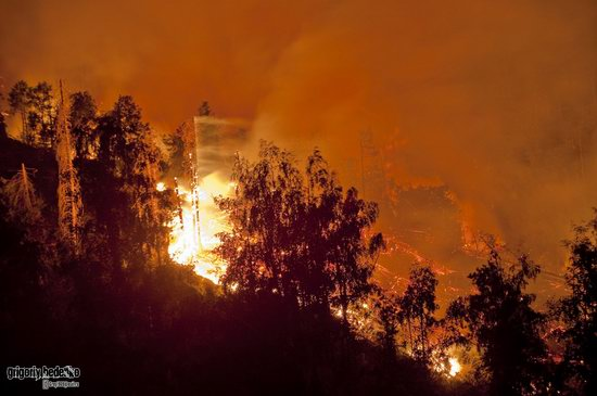 Large wildfire, Medeo, Almaty, Kazakhstan photo 1