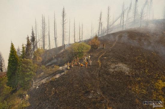 Large wildfire, Medeo, Almaty, Kazakhstan photo 10