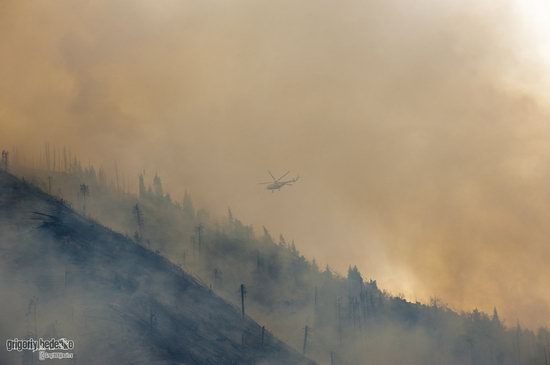Large wildfire, Medeo, Almaty, Kazakhstan photo 16