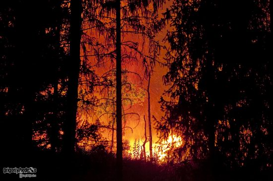 Large wildfire, Medeo, Almaty, Kazakhstan photo 2