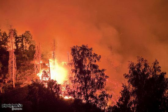 Large wildfire, Medeo, Almaty, Kazakhstan photo 5