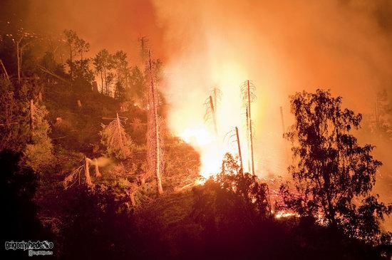 Large wildfire, Medeo, Almaty, Kazakhstan photo 6