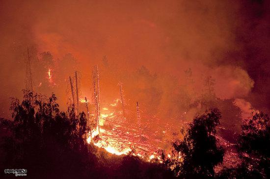 Large wildfire, Medeo, Almaty, Kazakhstan photo 7