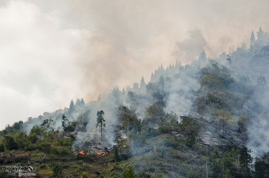 Large wildfire, Medeo, Almaty, Kazakhstan photo 8