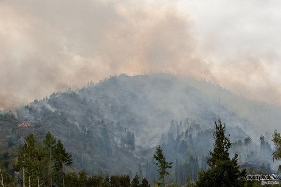 Large wildfire, Medeo, Almaty, Kazakhstan photo 9