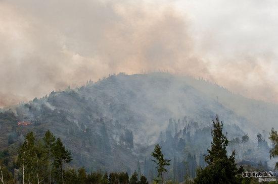 Large wildfire, Medeo, Almaty, Kazakhstan photo 9