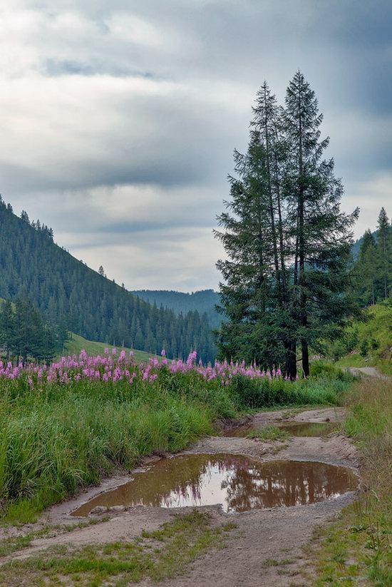Markakolsky State Nature Reserve, Kazakhstan photo 5