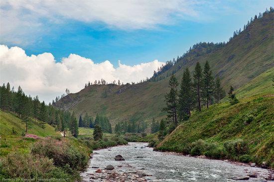 Markakolsky State Nature Reserve, Kazakhstan photo 6