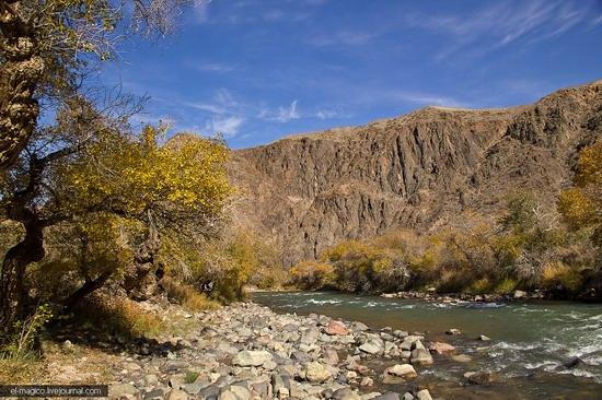 Unique nature of Charyn Canyon, Kazakhstan photo 25
