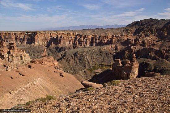 Unique nature of Charyn Canyon, Kazakhstan photo 29