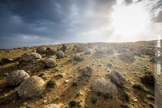 Western Kazakhstan - Mangystau region landscape photo 10