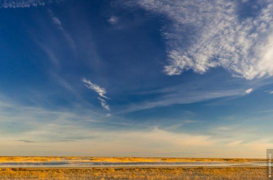 Expedition to Kyzylorda Region, Kazakhstan, photo 11