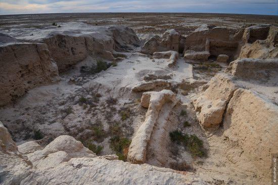 Expedition to Kyzylorda Region, Kazakhstan, photo 17