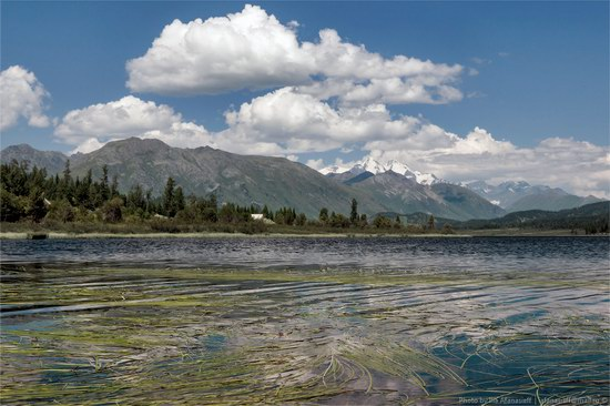 Lake Yazovoe - the Pearl of Altai, East Kazakhstan photo 13