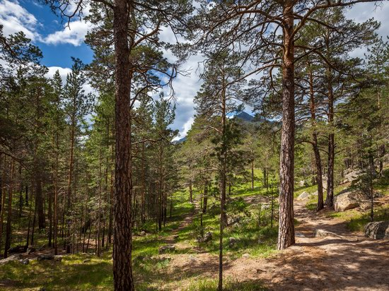 Borovoe resort, Akmola region, Kazakhstan, photo 9