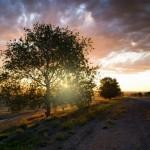 Wonderful landscapes of Kazakhstan