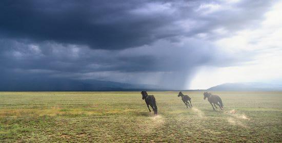 Wonderful landscapes of Kazakhstan, photo 7