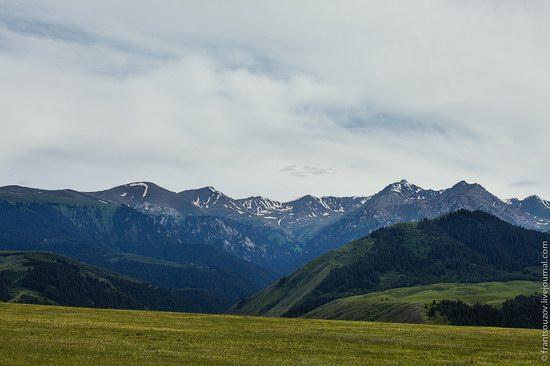 Walking along the mountain passes of Kazakhstan, photo 10