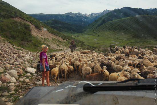 Walking along the mountain passes of Kazakhstan, photo 14