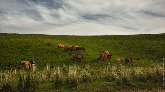 Walking along the mountain passes of Kazakhstan, photo 17