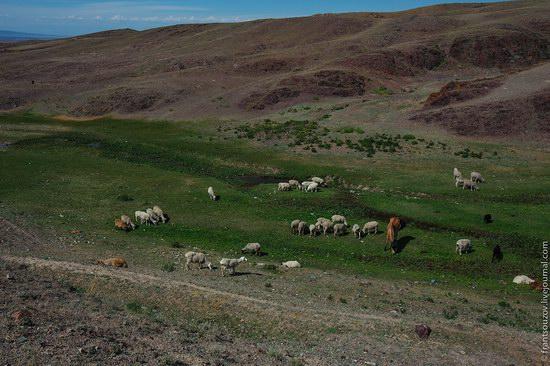 Walking along the mountain passes of Kazakhstan, photo 4
