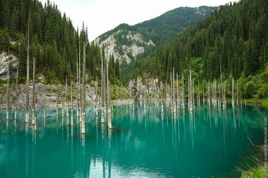 Sunken Forest, Kaindy Lake, Kazakhstan, photo 10