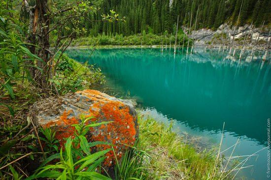 Sunken Forest, Kaindy Lake, Kazakhstan, photo 11
