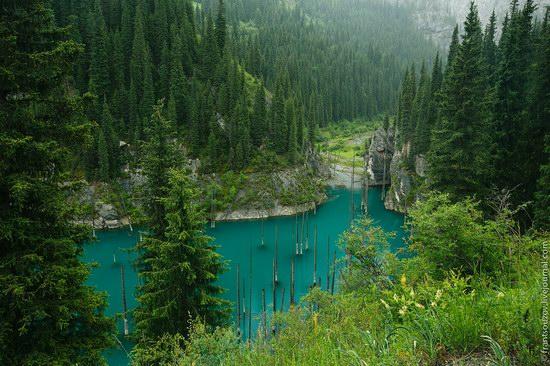 Sunken Forest, Kaindy Lake, Kazakhstan, photo 12