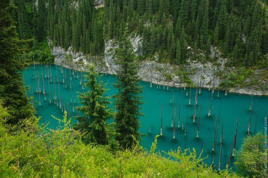 Sunken Forest, Kaindy Lake, Kazakhstan, photo 13