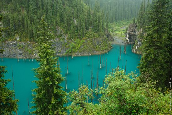 Sunken Forest, Kaindy Lake, Kazakhstan, photo 14