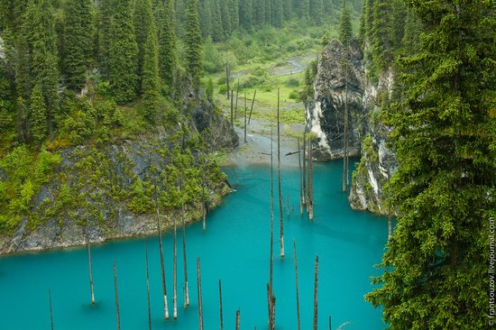 Sunken Forest, Kaindy Lake, Kazakhstan, photo 15
