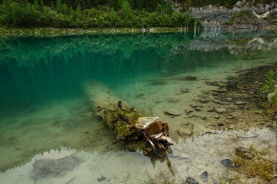 Sunken Forest, Kaindy Lake, Kazakhstan, photo 6
